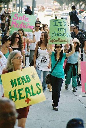 405px-Medical_cannabis_demo_2.JPG.jpeg
