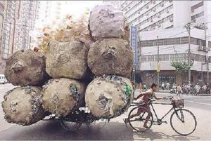 bicycle-carry-huge-weight.jpg