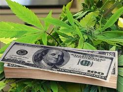Thumbnail image for 0802027_marijuana.jpg