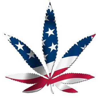 Marijuana leaf in red white and blue.jpeg