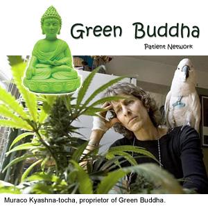 Green Buddha owner Muraco Kyashna-tocha.jpeg