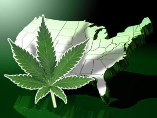 zimagemarijuana.jpg