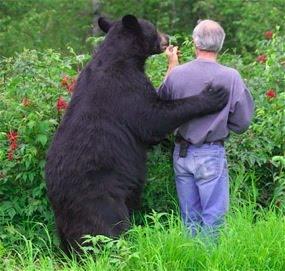 bear hugging man.jpeg