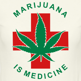 an analysis of the facts about medicinal marijuana Medical marijuana: review and analysis of  whether to relax federal marijuana prohibition enough to permit the medicinal use of botanical  marijuana in states .