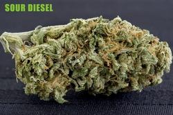 Sour-Diesel-copy.jpg