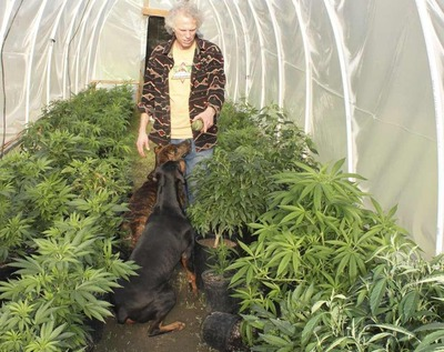 tim blake mendocino marijuana grower.jpg