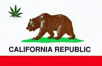 california-marijuana-flag.jpeg