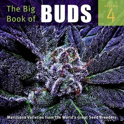 book_big_book_buds_4_rosenthal_01.jpg