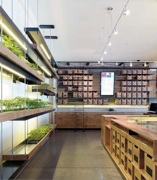 Marijuana dispensary wins international design award toke of the town - Cannabis interior ...