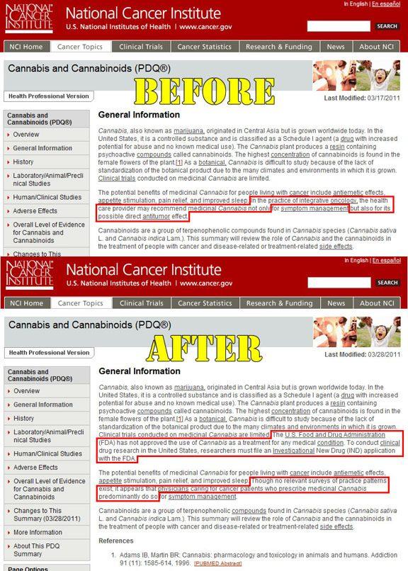 Thumbnail image for Cancer.gov-scrub sized.jpg