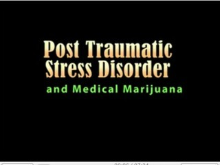PTSD and MMJ a sollution for War Veterans.jpeg