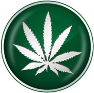 government-marijuana-300x299.jpeg