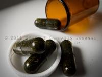 pills1.jpeg