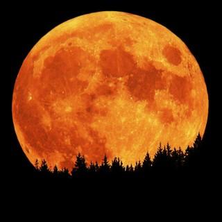 full-moon.jpeg