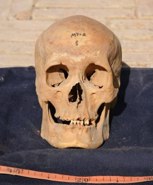 shaman skull.jpg