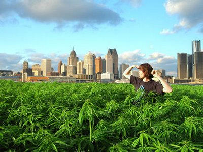 Weed_City.jpeg