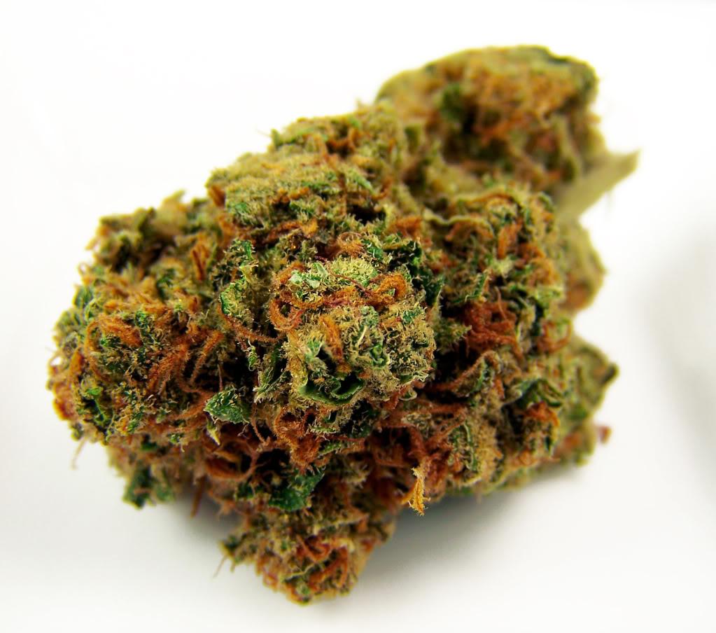 Buy herbal highs - Photo Credit