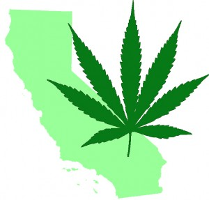 CaliforniaMarijuana-300x287.jpeg