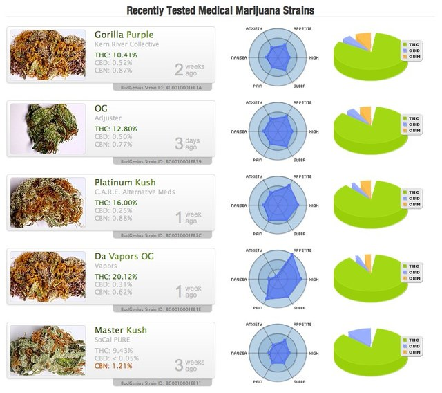 recently tested strains - budgenius.jpg