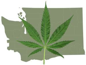 WashingtonWithPotLeaf.png