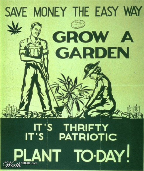Stoner Photo Of The Day: Grow A Garden!