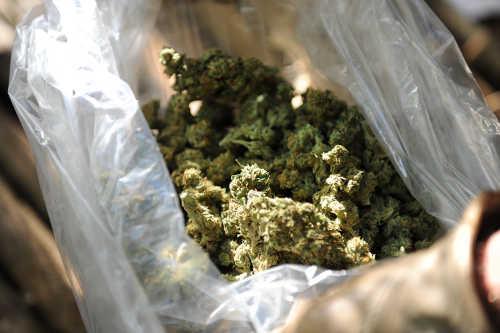 FCP20-20Processed20marijuana.jpeg