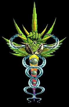 Thumbnail image for caduceus.jpeg