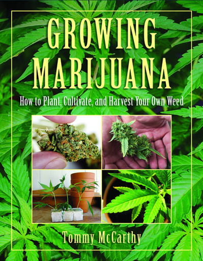 growing marijuana mccarthy cover.jpg