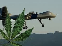 marijuana drone flip.jpg