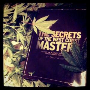 the-secrets-of-the-west-coast-masters-300x300.jpeg