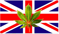 marijuana-england-uk.png