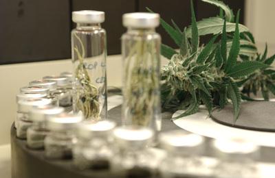 Thumbnail image for laboratory.jpg