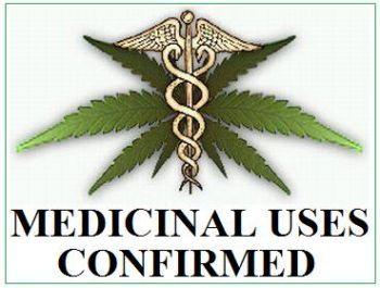 med_marijuana_uses.jpeg