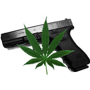 Local Medical Marijuana Cultivation & Possession Guidelines in California