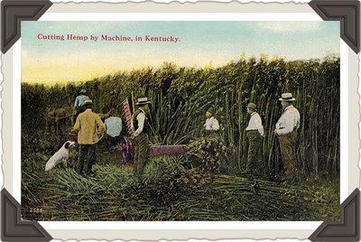 kentucky-postcards-2.jpeg