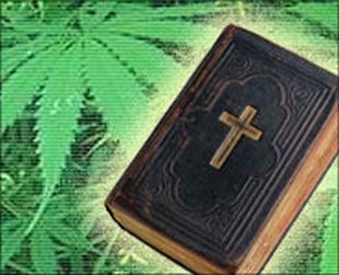 bible_pot310.jpeg