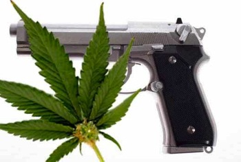 gunsandmedicalmarijuana.jpeg