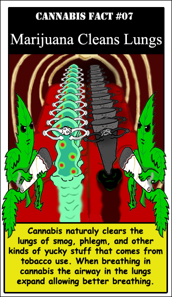046-marijuana-cleans-lungs.png