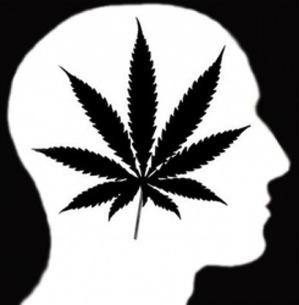 shiloute-of-head-and-leaf.jpeg
