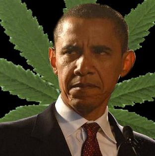 ObamaMarijuanaLeafTheWeedBlogToke.jpeg