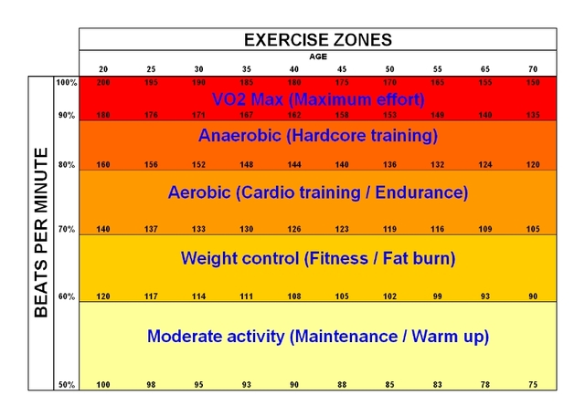 aerobic-anaerobic-exercise-zones.jpeg