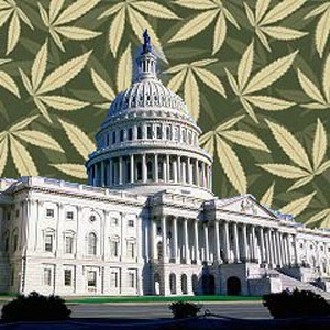 WashingtonDCmedicalmarijuana3001.jpeg