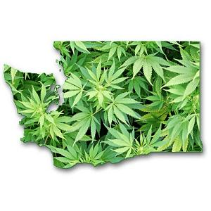 washington-state-medical-marijuana.jpeg