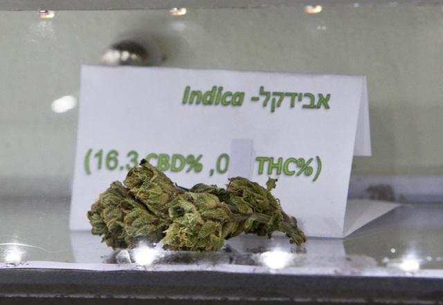 2012-07-03t152319z_751509443_gm1e8731stl01_rtrmadp_3_israel-marijuana.jpg