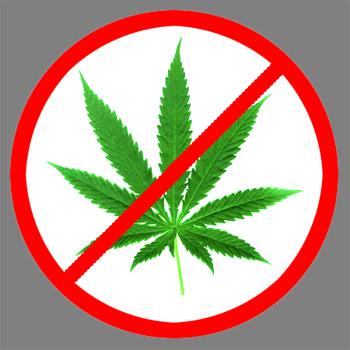proposed-alternatives-to-la-medical-marijuana-dispensary-ban.jpeg