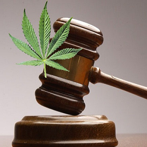 court-says-no-to-dispensary-bans.png