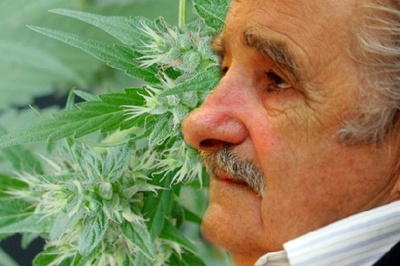 Uruguay_President_Mujica_Propses_Plan_to_Legalize_Marijuana.jpeg