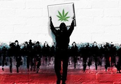 LegalizeItMovie.jpeg