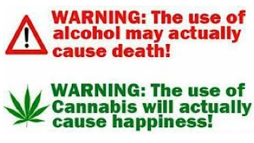 Why is weed worse then alcohol?