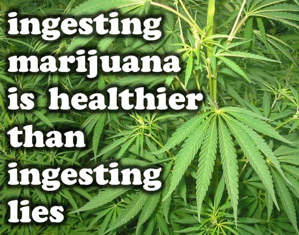 ingesting_marijuana_is_healthier_than_ingesting_lies.jpeg